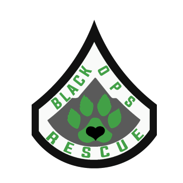 Black Ops Rescue